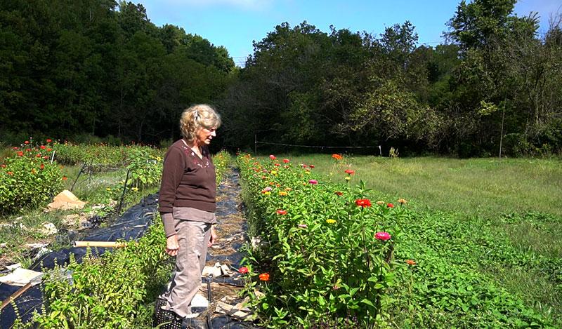 women farmers love jane o'tiernan