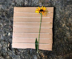 wildflower loom wildflowers looms