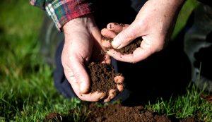 soil test tests garden farm