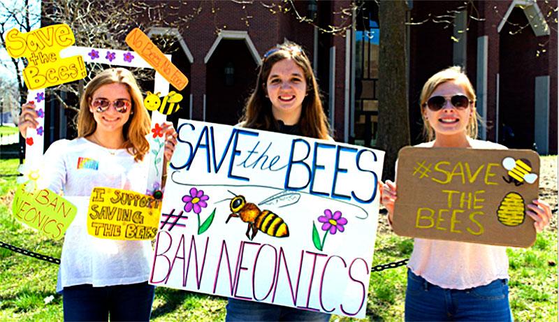 pollinators habitat bee campus usa