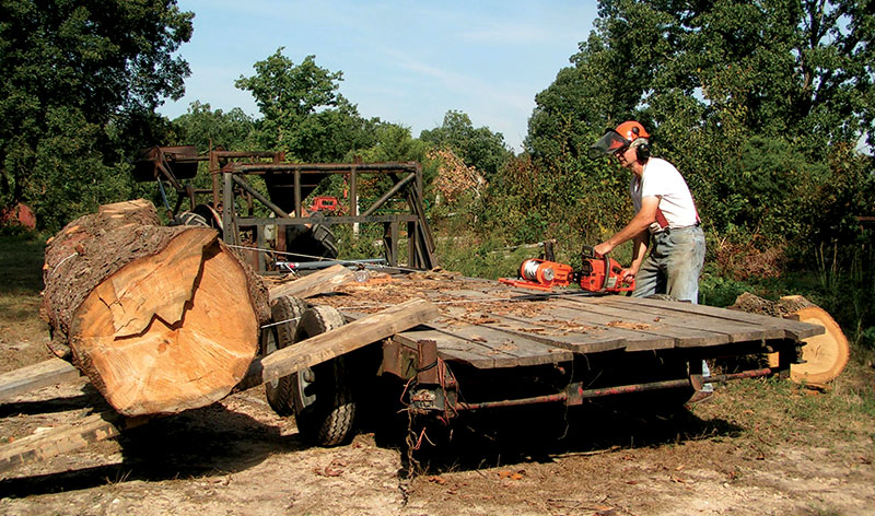 flatbed trailer tree