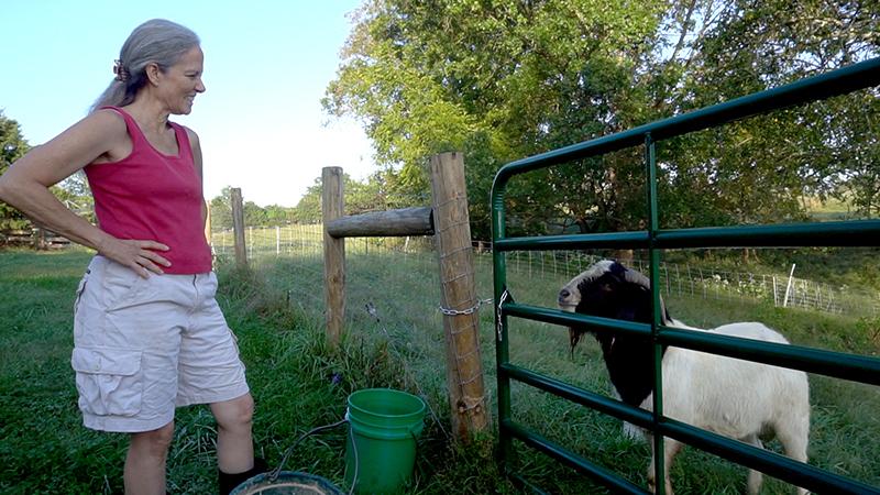 women farmers wisdom death pamla wood goat