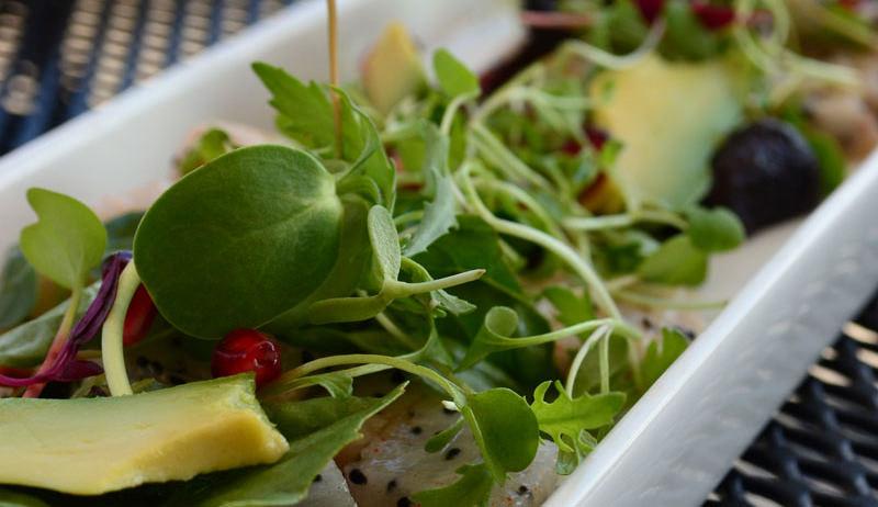 farm-sourced ingredients in restaurant salad