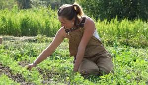 hobby farmer planning