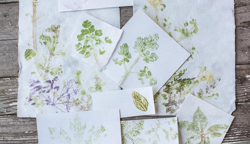 pounded leaf prints