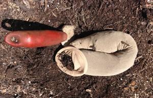 compost sleeve